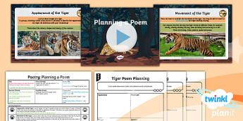 PlanIt Y6 Animals: The Tyger Lesson Pack - Animals: The Tyger, planning, poem, poetry, tiger,Year 6, y6, ks2, junior, planit, English, narrativ
