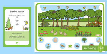 Woodland Counting Can You Find...? Poster and Prompt Card Pack - i spy, spot, how many, counting, forest, woods, animals, nature