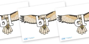 Initial Letter Blends on Hawks - Initial Letters, initial letter, letter blend, letter blends, consonant, consonants, digraph, trigraph, literacy, alphabet, letters, foundation stage literacy