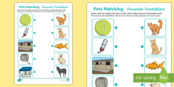 Pets Matching Activity English/Afrikaans - Cat, dog, fish, bird, tame, care, EAL