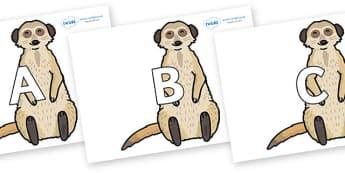 A-Z Alphabet on Meerkats - A-Z, A4, display, Alphabet frieze, Display letters, Letter posters, A-Z letters, Alphabet flashcards