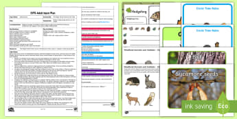 EYFS The Magic Forest Potion Circle Time Adult Input Plan and Resource Pack - PSED, Circle Time, woodland, forest, early years planning, eYFS, Adult Input, potion, animals, trees