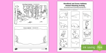Woodland and Ocean Habitats Animal Sorting Worksheet / Activity Sheet English/Mandarin Chinese - Woodland and Ocean Habitats Animal Sorting Worksheet / Activity Sheet - woodland, ocean, habitats, animal, sorti