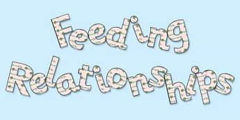 'Feeding Relationships' Display Lettering - feeding relationships, feeding relationships display, feeding relationships lettering, food chains display, ks2