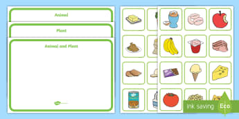 Where Does My Food Come From? Sorting Cards - Food origins, Animal, Plants, Produce, Healthy eating, food, Farm to Fork, Farming, Organic