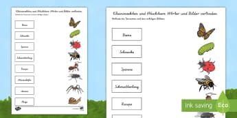 Dorable Lebenszyklus Arbeitsblatt Component - Kindergarten ...