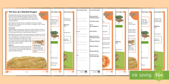 KS2 Pet Care of a Bearded Dragon Differentiated Reading Comprehension Activity - KS2 National Pet Month (April 2017), reading comprehension, reading,fact file, non fiction text, non