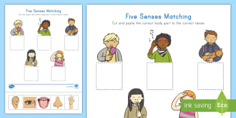 Five Senses Matching Activity Sheet - All About Me, See, Taste, Hear, Smell, Feel, Touch, Science, Cut and Glue, Cut and Paste