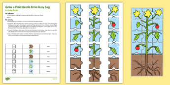 Grow a Plant Beetle Drive Busy Bag Resource Pack for Parents - growing, growth, beanstalk, dice, number, counting, number recognition