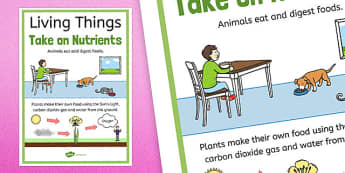 Living Things Take on Nutrients Display Poster - australia, Science, Year 3, Living, Non-Living, Characteristics, Poster, Australian Curriculum
