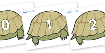 Numbers 0-31 on Tortoises - 0-31, foundation stage numeracy, Number recognition, Number flashcards, counting, number frieze, Display numbers, number posters
