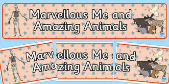 Marvellous Me and Amazing Animals Display Banner - display banner