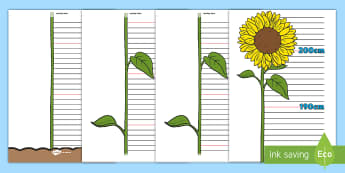 Australia Flower Height Chart Activity - Solving Maths Problems Strategy A3 Poster - addition, subtraction, add, take away, problem solving,