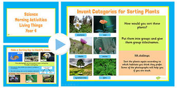 Year 4 Early Morning Activities Living Things - science, ks2