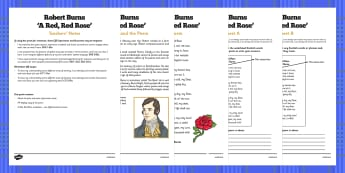 Scots Poetry - Robert Burns: A Red Red Rose - cfe, curriculum for excellence, scots, poetry, robert burns