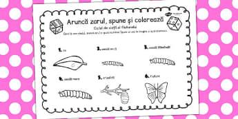 Ciclul de viață la fluture - Aruncă zarul și colorează