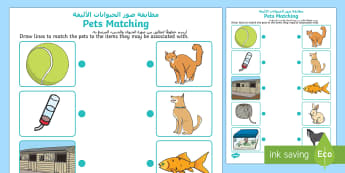 Pets Matching Activity Arabic/English - Pets Matching Activity - pets, matching, activity, match, matching activity,petsd,Tch, mathching, EA