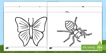 Hojas de colorear: Los bichos (imagenes detalladas) Hojas de colorear - libélula, abeja, caracol, hormiga, típula, escarabajo, mariposa, oruga, gusano, mariquita, cochini