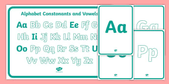 Alphabet Constonants and Vowels Display Poster  - sample, freebie, english, language, teaching, taste, test, tester, bumper
