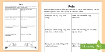 Pets Reading  Worksheet / Activity Sheet - reading, assessment, drawing, pets, actions, verbs, worksheet, worksheet / activity sheet,Irish, worksheet