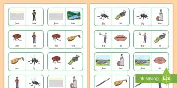 fl and l Near Minimal Pair Dominoes - fl, f, l, cluster reduction, cluster simplification, minimal pairs, sen, salt, speech, speech sounds
