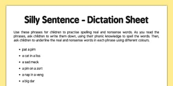 Silly Sentence Teacher Dictation Sheet - silly sentence, teacher, dictation, sheet