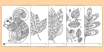 Adult Colouring Autumn Themed Mindfulness Colouring Sheets - autumn, mindfulness, colouring, adult colouring