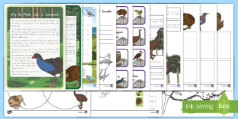 New Zealand Birds Reliever's Activity Pack - relievers, y1, y2, y3, kiwi, pukeko, extinct, moa, nZ