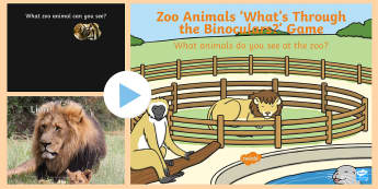 Zoo Animals What's Through the Binoculars PowerPoint Game - EYFS, Early Years, Key Stage 1, KS1, Zoo, lion, tiger, elephant, monkey, rhino, giraffe,  Interactiv