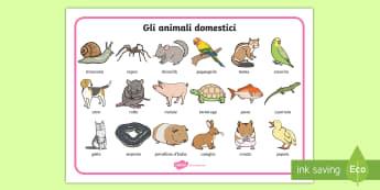 Gli animali domestici Vocabolario Illustrato - gli, animali, domaestici, gatto, cana, compagni, italiano, italian, nomi, materiale, scolastico