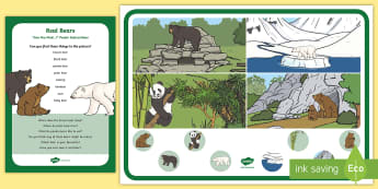 Bears and their Habitats Can You Find...? Poster and Prompt Card Pack - bears, brown bear, polar bear, grizzly bear, panda bear, teddy bear, woodland, arctic, i spy, oberva
