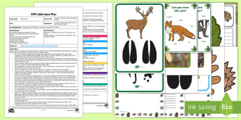 EYFS Tracks on the Forest Floor Movement Activity Adult Input Plan and Resource Pack - EYFS, early years planning, adult led, woodland, forest, animals, animal tracks, animal footprints,