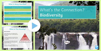 Biodiversity What's the Connection? PowerPoint - KS4 What's the Connection?, Biodiversity, Bioaccumulation, Sustainable, Deforestation, Greenhouse E