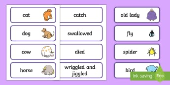 There Was an Old Lady Who Swallowed a Fly Word Cards - word cards