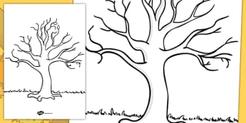 Tree Template - KS1 Nature Drawing Resources