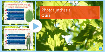 Photosynthesis Quick Quiz - chlorophyll, limiting factors, equations, energy, reactants