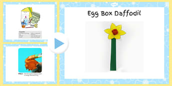 Egg Box Daffodil Craft Instructions PowerPoint - craft, powerpoint, egg, box, daffodil, instructions