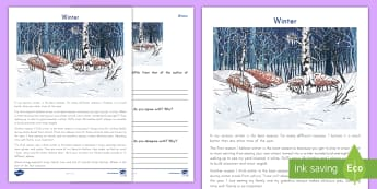Winter Point of View Activity Sheet - Persuasive, Argument, Seasons, Comparing, Reading Response, opinion, worksheet