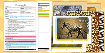 Painting Animal Patterns EYFS Adult Input Plan And Resource Pack - plans