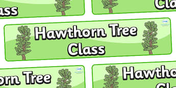 Hawthorn Themed Classroom Display Banner - Themed banner, banner, display banner, Classroom labels, Area labels, Poster, Display, Areas