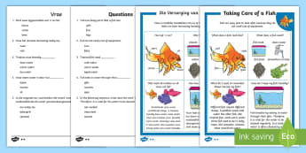How to Look After a Fish Differentiated Reading Comprehension English/Afrikaans - pets, animals, aquatic, water, home, literacy, troeteldiere, EAL