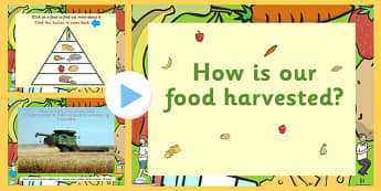 How is our Food Harvested PowerPoint - how is our food harvested, harvesting, harvesting powerpoint, food powerpoint, food information powerpoint, harvest
