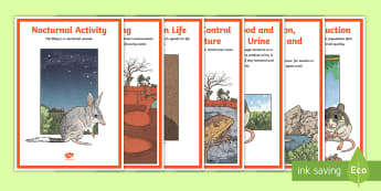 Australian Desert Animal Adaptations Display Posters - ACSSU043, animal behaviour, adapting, desert habitat, ACSSU211