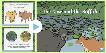 The Cow and the Buffalo PowerPoint - Traditional Thai Tales