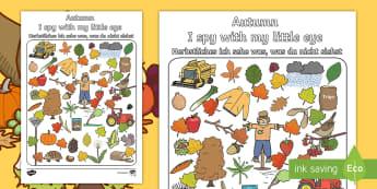 Autumn Themed I Spy With My Little Eye Activity English/German - EAL, German, season, weather, autumn, weather, autumn leaves,German-translation