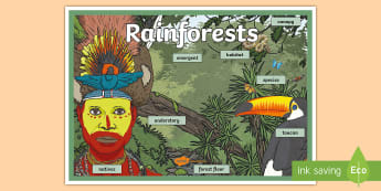 KS2 Rainforests Display Poster  - PlanIt - Geography Year 3 - Rainforests Lesson 5: The Amazon Lesson Pack - geography, rainforest, tr