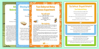EYFS Spring Themed Science Experiments Resource Pack - experiment, investigate, early years, understanding the world