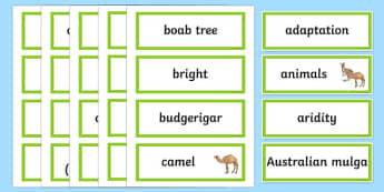Desert Survivors Word Wall Display Cards - australia, Australian Curriculum, Desert Survivors, science, Year 5, word wall, display