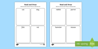 Pets Read and Draw Activity Sheet - EYFS, Early Years, KS1, Pets, Animals, National Pet Month,car, dog, rabbit, Literacy, English, readi