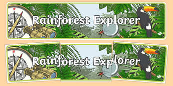 Rainforest Explorer Role Play Display Banner - rainforest, explorer, role play, display, banner, sign, poster, snake, forest, ecosystem, rain, humid, parrot, monkey, gorilla